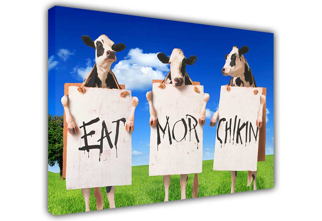 graphic about Eat Mor Chikin Printable Sign referred to as Cows With Indicator Take in Far more Hen Upon Framed Canvas Print