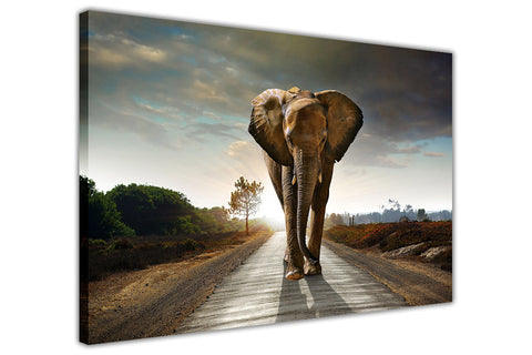 Elephant Walking on Road on Framed Canvas Wall Art Prints Room Deco Poster Photo Landscape Pictures Home Decoration Artwork-3D