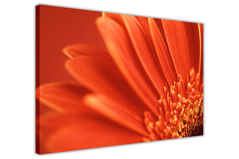 Landscape Orange Flower on Framed Canvas Wall Art Prints Floral Pictures Home Decoration Room Deco Poster Photo Artwork-3D