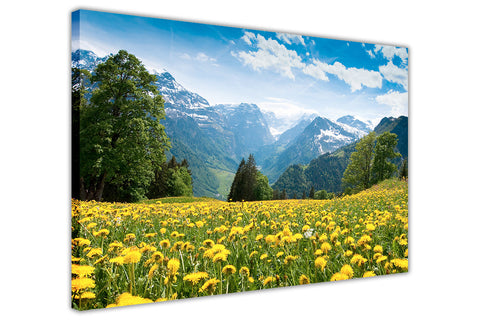 Flower Field Mountains on Framed Canvas Wall Art Prints Room Deco Poster Photo Landscape Pictures Home Decoration Artwork-3D