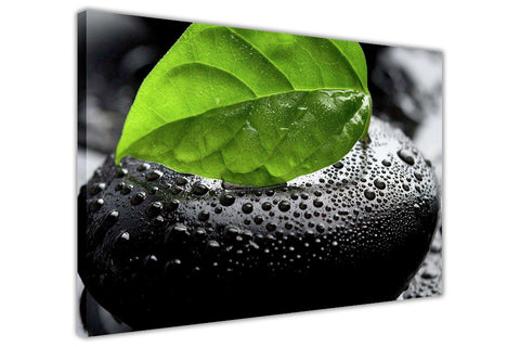 Green Leaf and Pebble on Framed Canvas Wall Art Prints Floral Pictures Home Decoration Room Deco Poster Photo Artwork-3D