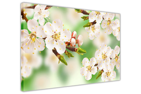 Green Spring Blossom on Framed Canvas Wall Art Prints Floral Pictures Home Decoration Room Deco Poster Photo Artwork-3D