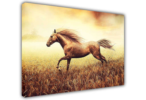 Brown Stallion Running Through Field on Framed Canvas Wall Art Prints Room Deco Poster Photo Landscape Pictures Home Decoration Artwork-3D