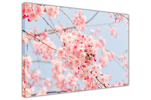 Japanese Cherry Tree on Framed Canvas Wall Art Prints Floral Pictures Home Decoration Room Deco Poster Photo Artwork-3D