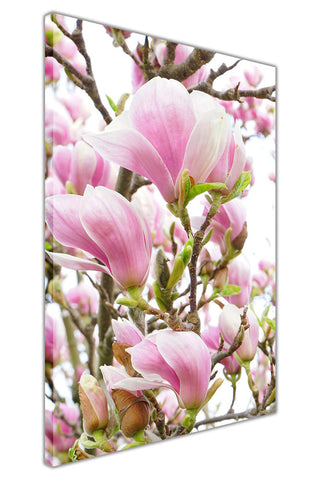 Magnolia Flower on Framed Canvas Wall Art Prints Floral Pictures Home Decoration Room Deco Poster Photo Artwork-3D