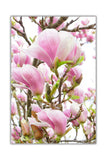 Magnolia Flower on Framed Canvas Wall Art Prints Floral Pictures Home Decoration Room Deco Poster Photo Artwork-Front