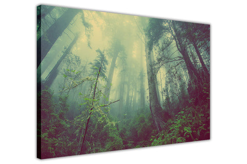 Beautiful Misty Forest on Framed Canvas Wall Art Prints Room Deco Poster Photo Landscape Pictures Home Decoration Artwork-3D