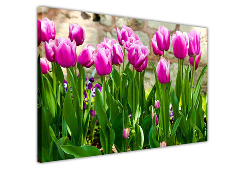 Pink Tulip Flowers on Framed Canvas Wall Art Prints Floral Pictures Home Decoration Room Deco Poster Photo Artwork-3D