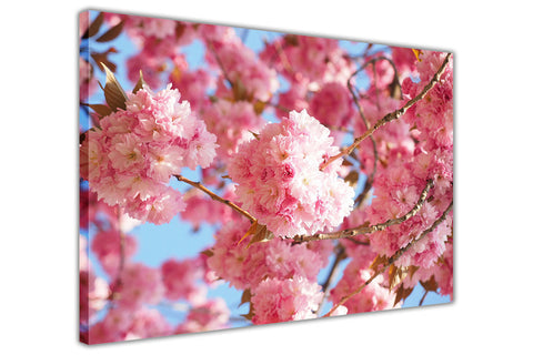 Pink Cherry Blossom on Framed Canvas Wall Art Prints Floral Pictures Home Decoration Room Deco Poster Photo Artwork-3D