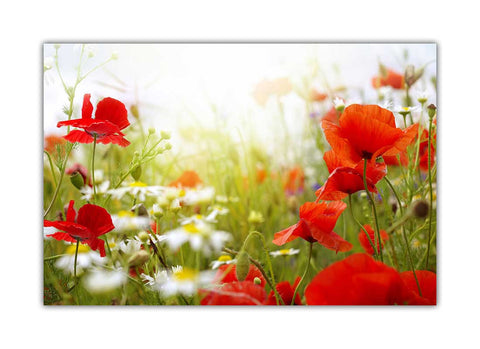 Red Flowers and White Daisy on Framed Canvas Wall Art Prints Floral Pictures Home Decoration Room Deco Poster Photo Artwork-3D