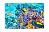 Under Water Sea Life on Framed Canvas Wall Art Prints Room Deco Poster Photo Landscape Pictures Home Decoration Artwork-Front