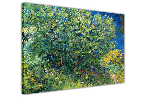 Lilac Bush by Vincent Van Gogh Canvas Wall Print Famous Artwork For Livingroom Bedroom Office Art Pictures Framed