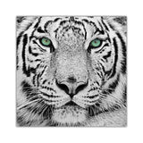 White Tiger Green Eyes on Framed Canvas Wall Art Prints Room Deco Poster Photo Landscape Pictures Home Decoration Artwork-Front