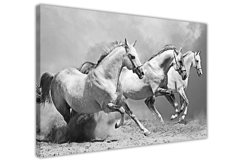 White Horses on Framed Canvas Wall Art Prints Room Deco Poster Photo Landscape Pictures Home Decoration Artwork-3D