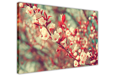 White and Red Spring Flowers on Framed Canvas Wall Art Prints Floral Pictures Home Decoration Room Deco Poster Photo Artwork-3D