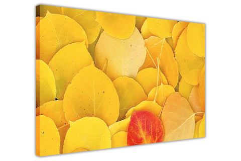 Yellow Leaves on Framed Canvas Wall Art Prints Floral Pictures Home Decoration Room Deco Poster Photo Artwork-3D