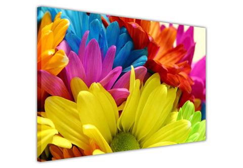 Rainbow Colour Dasies on framed canvas prints wall art pictures floral posters home decoration artowork-3D