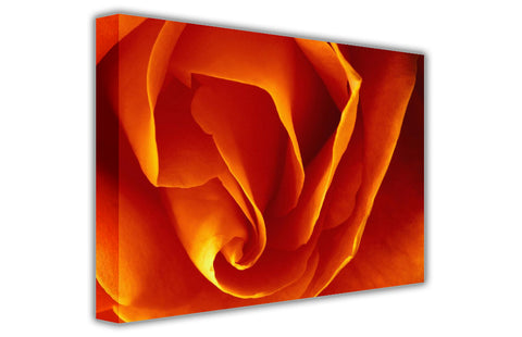 Landscape Orange Rose on Framed Canvas Wall Art Prints Floral Pictures Home Decoration Room Deco Poster Photo Artwork-3D