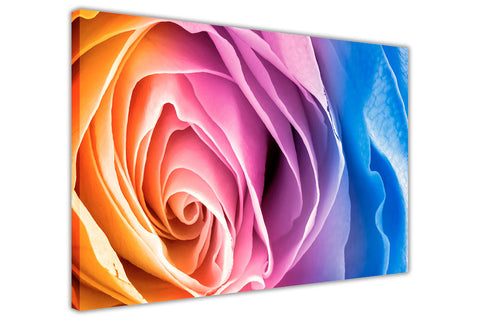 Rainbow Coloured Rose Petal on Framed Canvas Wall Art Prints Floral Pictures Home Decoration Room Deco Poster Photo Artwork-3D