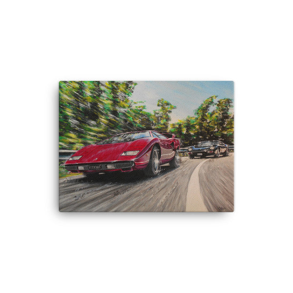 Catch This canvas print