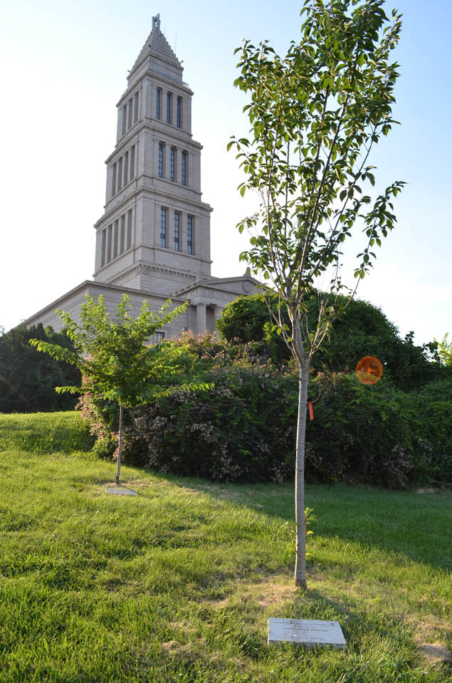 The Memorial<br>Dedicatory Tree Program