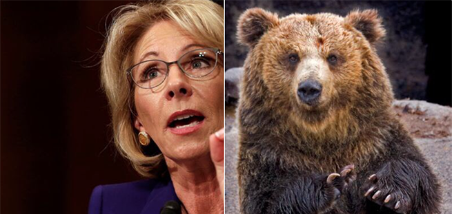 The 20 Most Hilarious Things On the Internet About DeVos