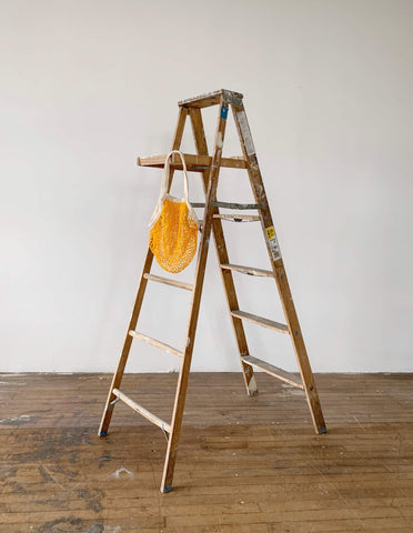 net bag on a ladder
