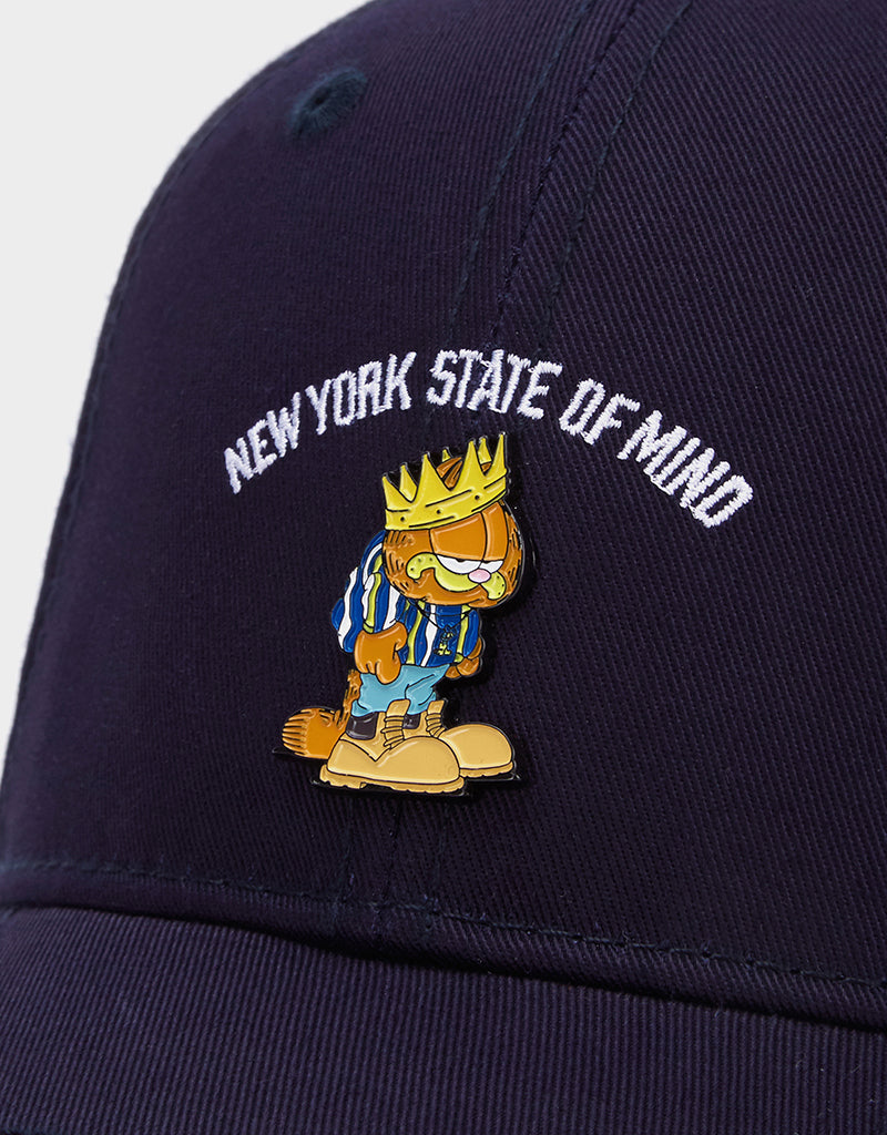 C&S WL KING GARFIELD CURVED CAP