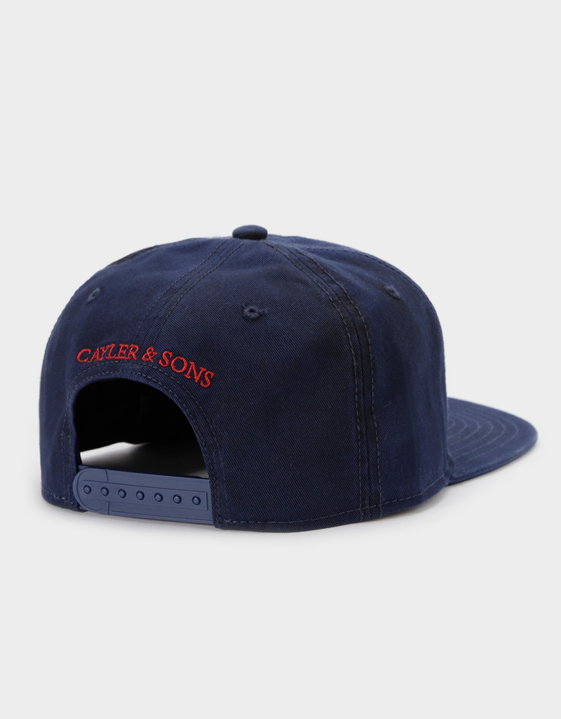 C&S CL OWNERS CAP
