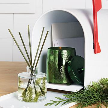Thymes Frasier Fir Pine Needle Diffuser | Fig Linens and Home