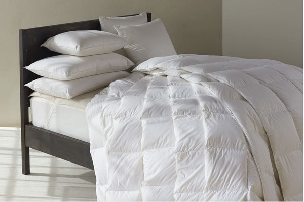 Coyuchi Organic Bedding and Pillows - Feather/Down Pillows - Fig Linens