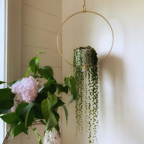 Image of M+A's Alabaster Hanging Planter with trailing plant