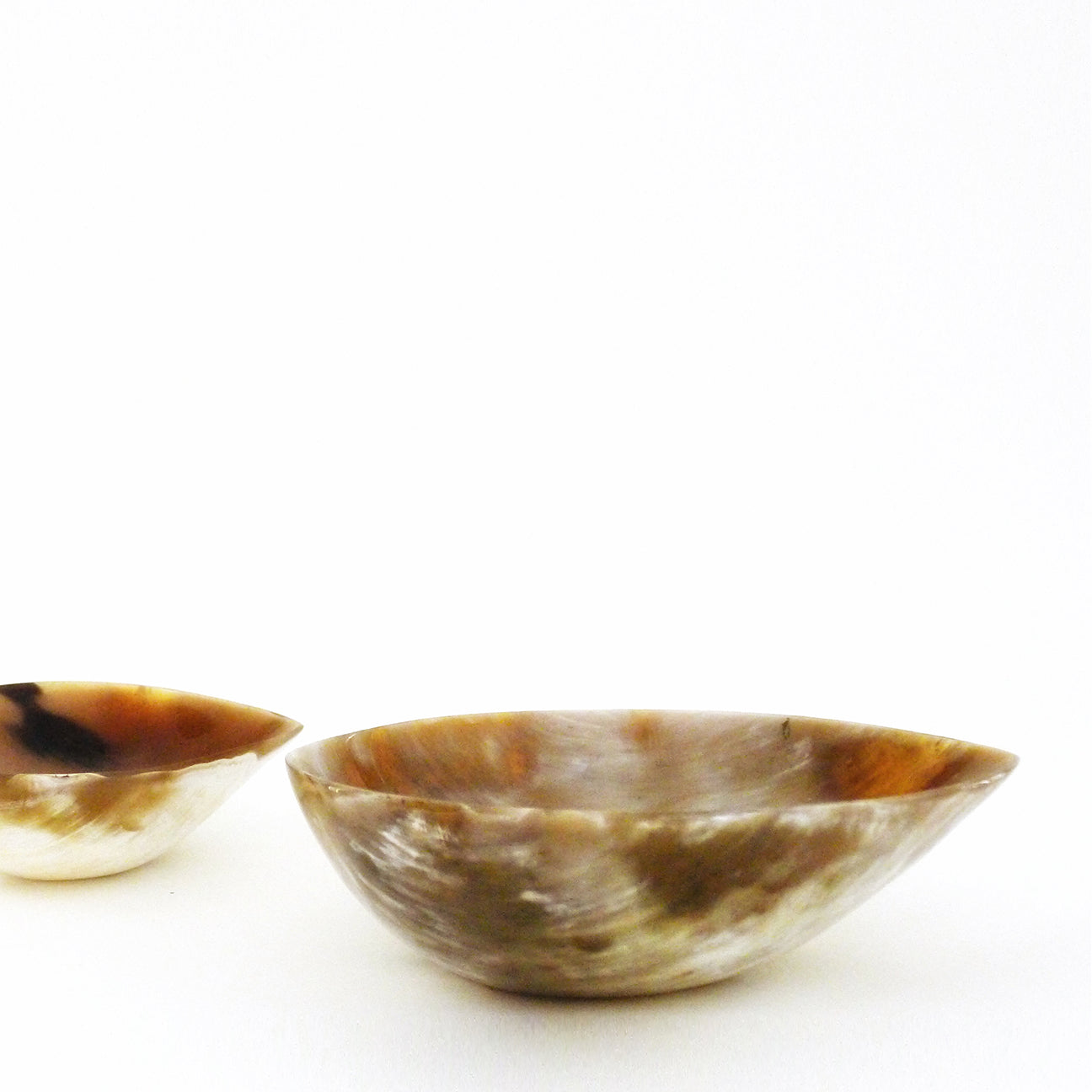 M+A NYC Carved and Polished Horn Pod Bowls