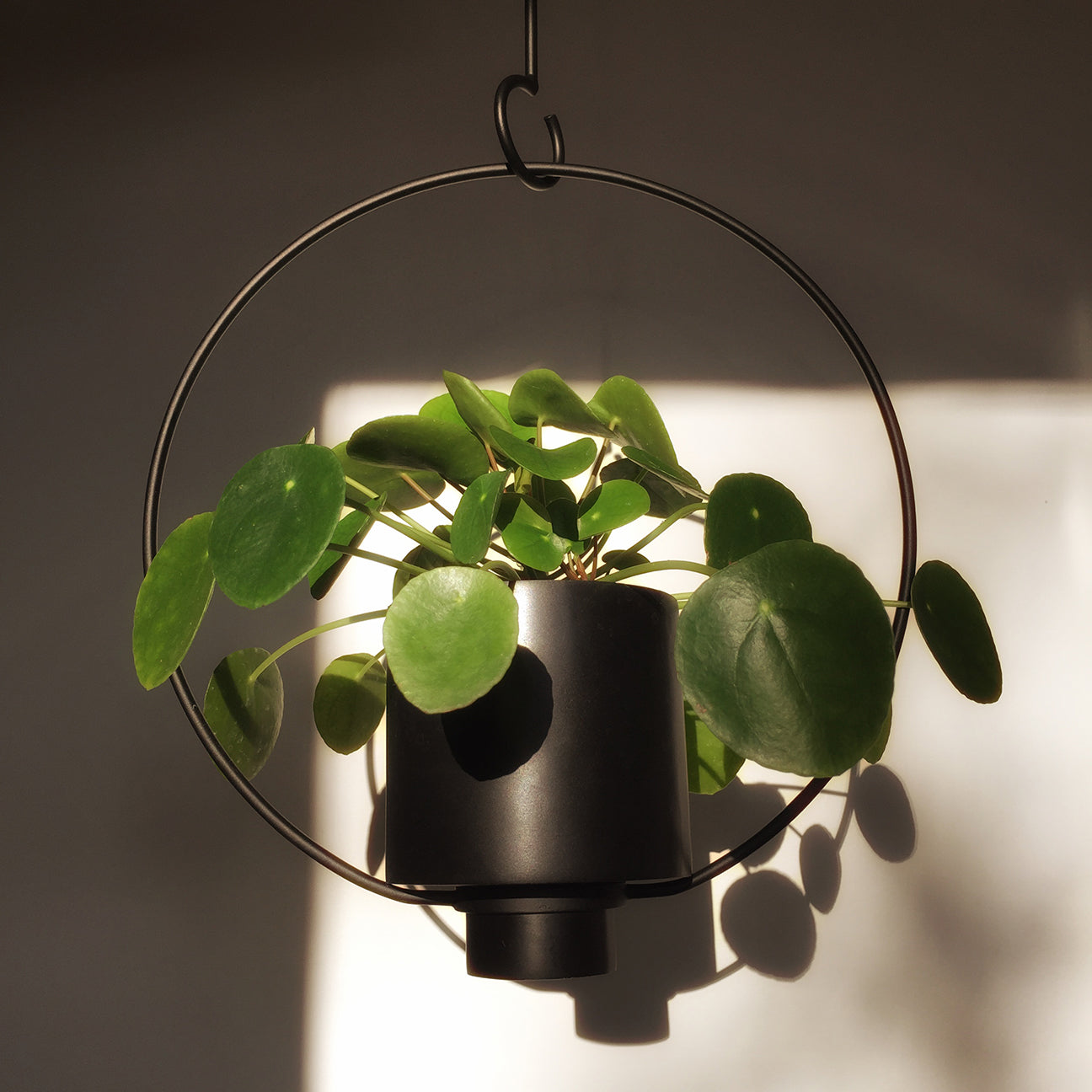 M+A NYC Hanging Planter with Hook - Small - Soapstone