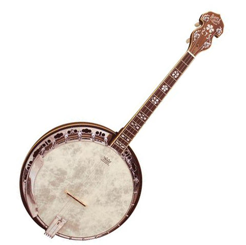 Barnes and Mullins BJ504BW  Empress Model Tenor Banjo