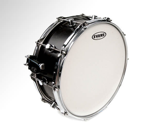 "Evans 14"" Genera HD Coated"