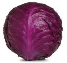 Cabbage Red 5 lb Organic