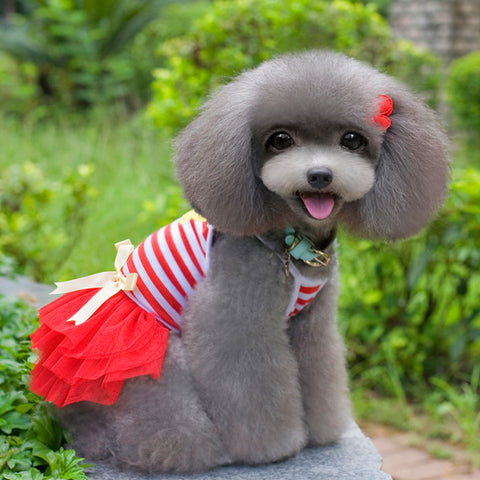 Dog Dress - Stripes & Tulle
