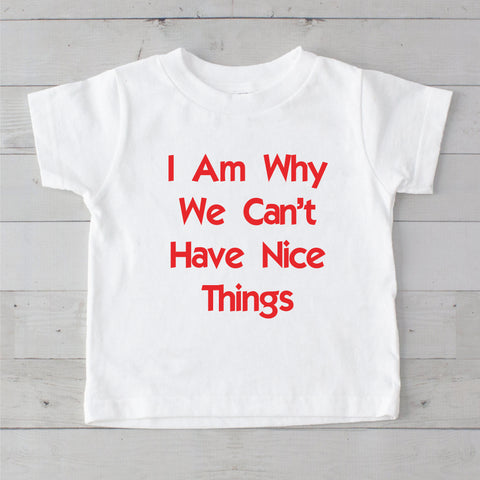 I Am Why We Can't Have Nice Things Graphic T-Shirt