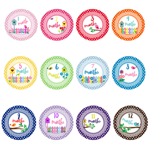 Baby Monthly Stickers - Little Birds