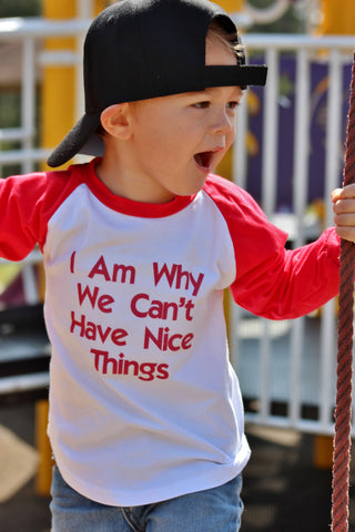 I Am Why We Can't Have Nice Things Raglan T-Shirt