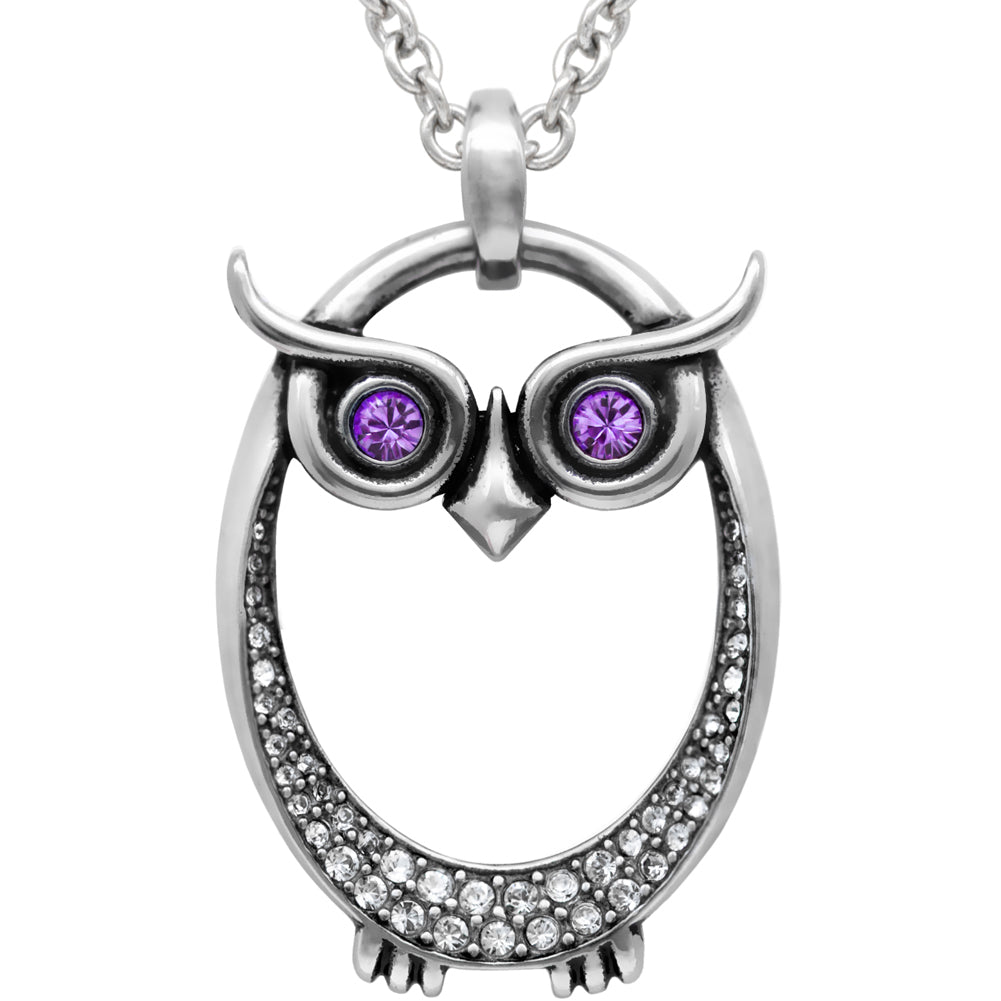 Controse Jewelry Owl February Birthstone Necklace Swarovski Crystals