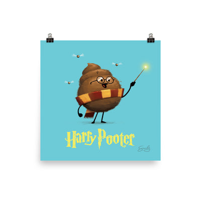 Harry Pooter