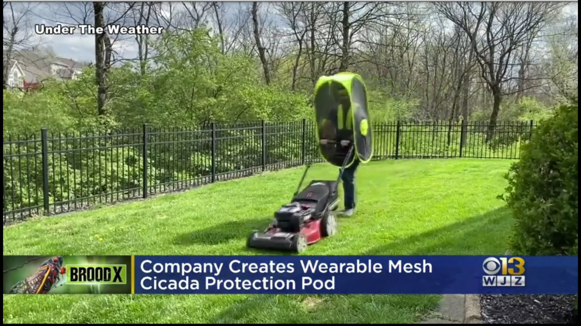 WJZ-TV CBS 13 Baltimore: Company Creates Wearable Mesh Cicada Protection Pod