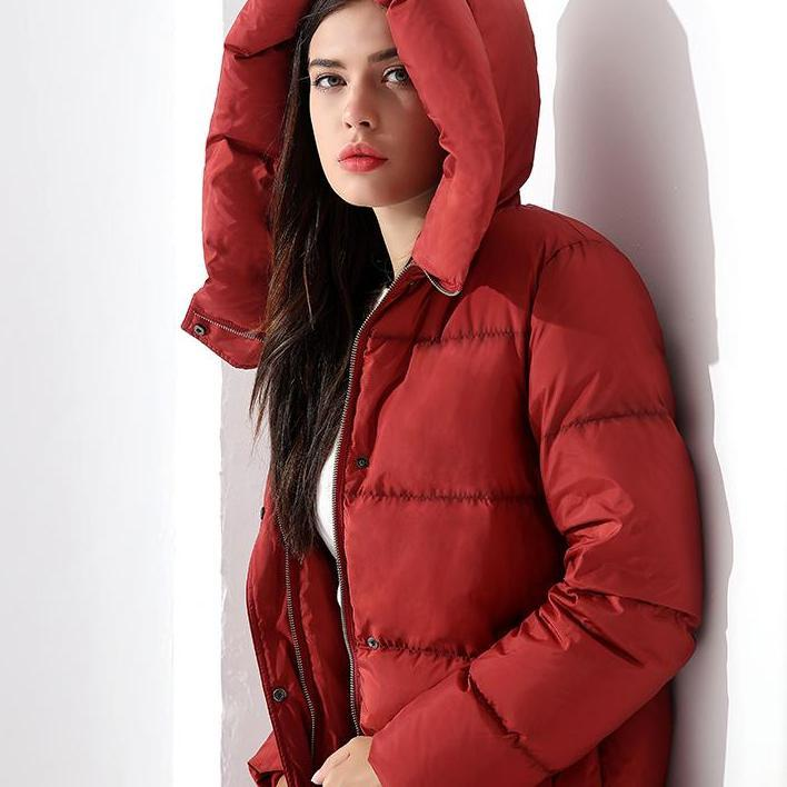 Down Parka Women's Long Down Jackets Winter Coats For Women Outwear Female Long Hooded Coat Feather Parka-Coats & Jackets-SheSimplyShops