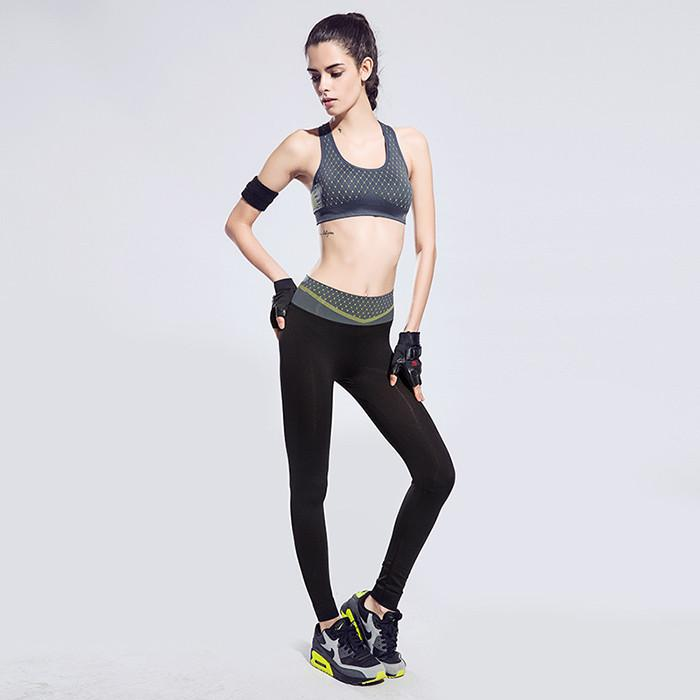 Yoga Tight Sports Pants and Bra Suits Female Fitness Jogging High Moisture Wicking Stretch Beam Leg Pants Yoga Sets-ACTIVEWEAR-SheSimplyShops