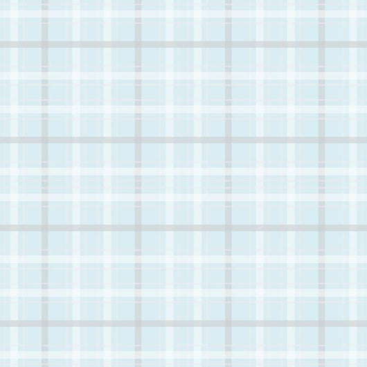 When Skies are Grey Plaid Blue Riley Blake Designs - SC 5605