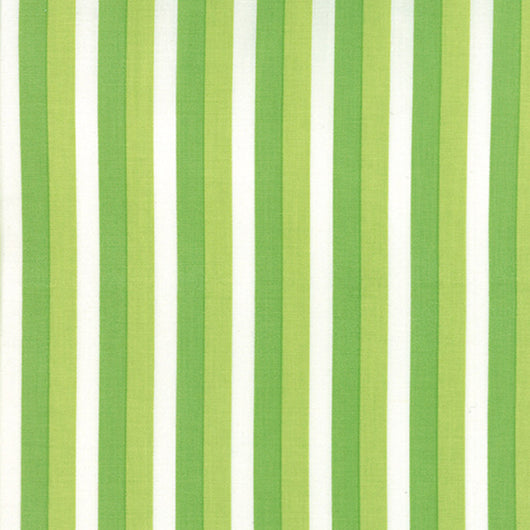Color Theory Ombre Stripes Lime 10835 13