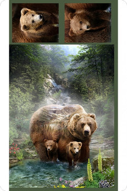 Hoffman Grizzly Bear Cuddle Panel