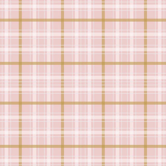 When Skies are Grey Plaid Pink Riley Blake Designs - SC 5605